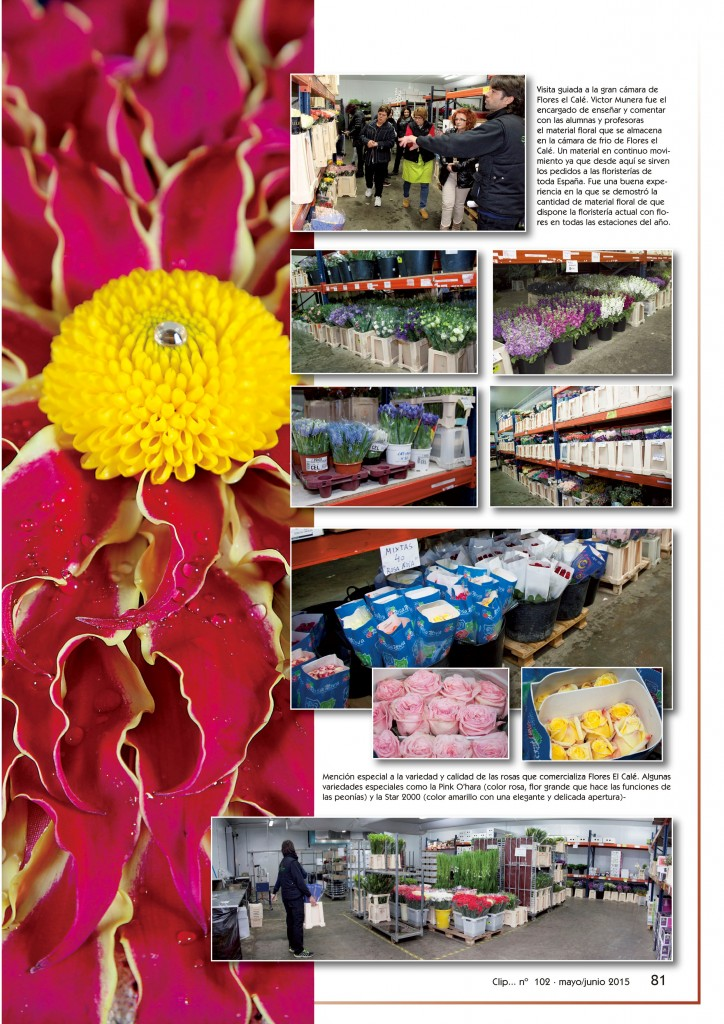 revista Clip... flores y más nº102 pág. 81. B&E Autoedición, SL