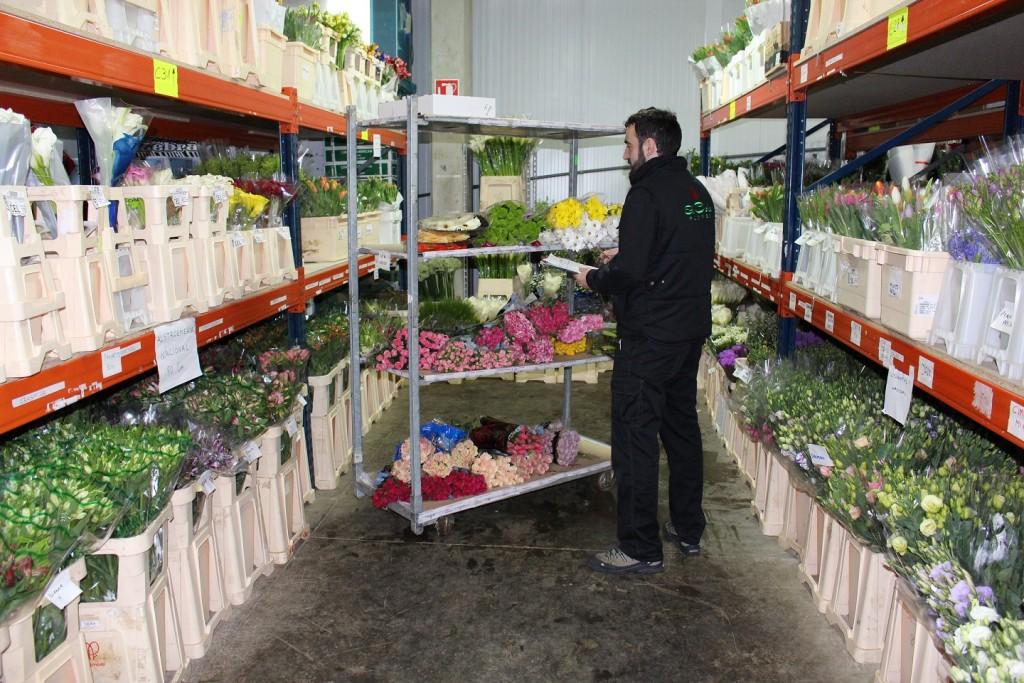 La higiene y desinfección de la cámara son vitales para mantener la calidad de flores y verdes de corte