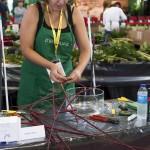 MAF Sandra Isern (foto Clip)