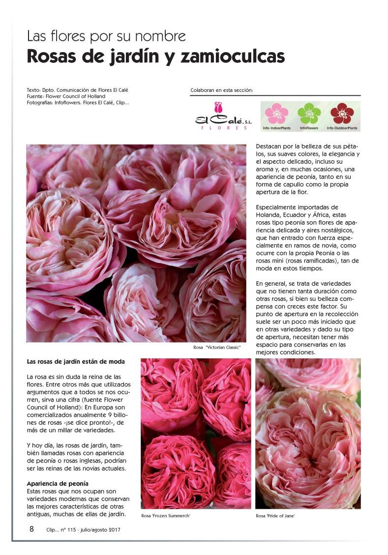 Reportaje Clip nº 115 | Blog del Florista