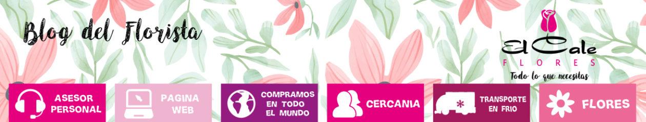 Blog del Florista