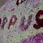 Corpus Sitges'15. Alfombra floral, detalle. Foto: Ayuntamiento de Sitges