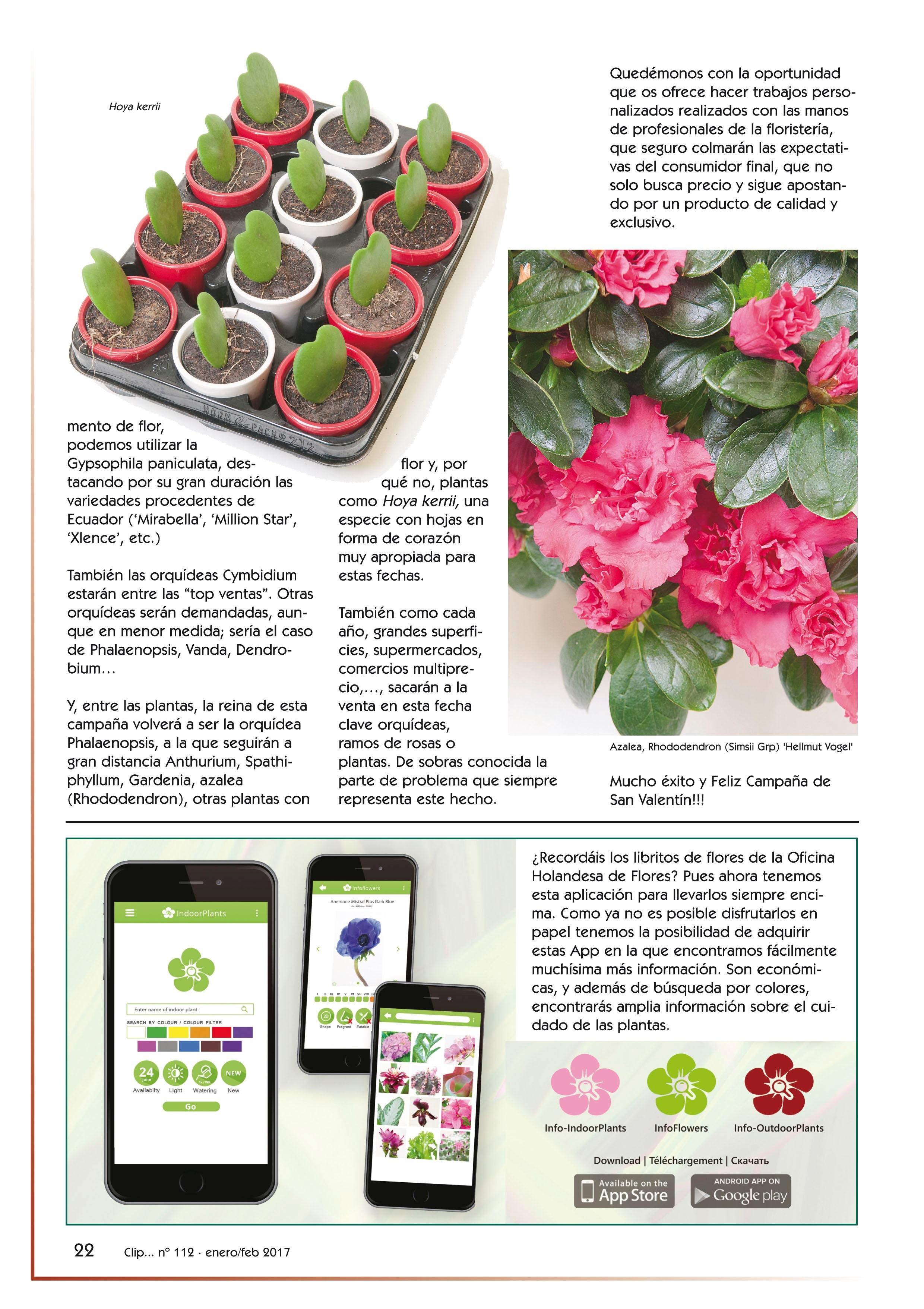 San Valentín ¿regalar flores o plantas? (clip nº 112, pág. 22)