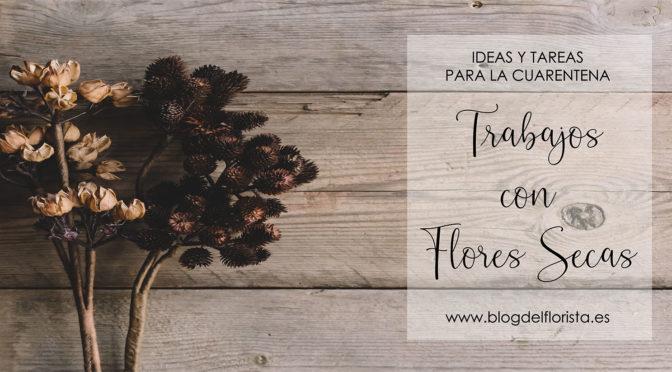TRABAJOS CON FLORES SECAS